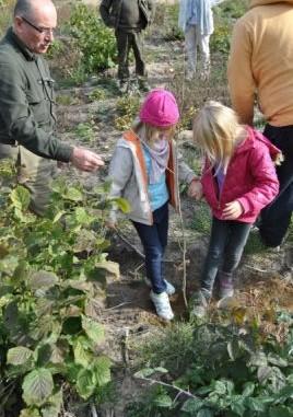Przedszkolaki szadzą drzewko