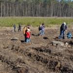foto: Leśna Kraina sadzi las z harcerzami - 10 150x150