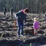 foto: Leśna Kraina sadzi las z harcerzami - 2 1 150x150