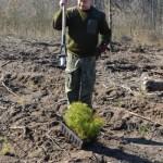foto: Leśna Kraina sadzi las z harcerzami - 3 1 150x150
