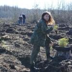 foto: Leśna Kraina sadzi las z harcerzami - 8 1 150x150