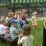 foto: Dzień Dziecka z Nadleśnictwem Sokołów - 17727 150x150