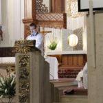foto: I. rocznica ogłoszenia św. Rocha patronem miasta - MG 6873 150x150