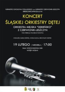 06 - koncert orkiestry detej