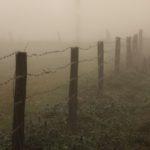 foto: Podlaskie bezdroża - wystawa fotografii Heleny Anny Romańskiej - IMG 2318 150x150
