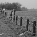 foto: Podlaskie bezdroża - wystawa fotografii Heleny Anny Romańskiej - IMG 9101 150x150