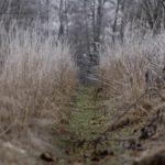 foto: Podlaskie bezdroża - wystawa fotografii Heleny Anny Romańskiej - IMG 9133 150x150