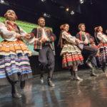 foto: NSF: Prezentowali się na sokołowskiej scenie - DSC4839 150x150