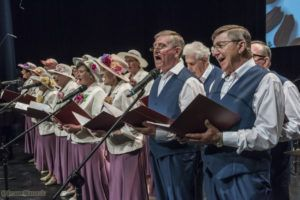 """foto: Jubileusz Zespołu Wokalnego """"Seniorynki"""" - 02 2 300x200"""