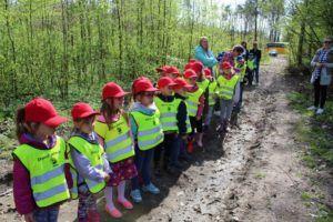 foto: Światowy Dzień Ziemi -100 drzew na 100-lecie Niepodległości - 1 300x200