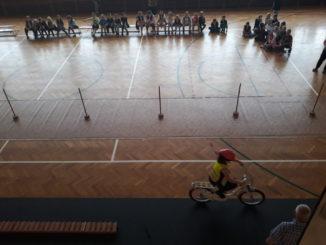 Zajęcia praktyczne na sali gimnastycznej