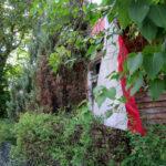 """foto: Plener malarski """"ABSOLWENCI I GOŚCIE"""" SUPRAŚL 2018 - IMG 7659 150x150"""