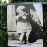 """foto: Plener malarski """"ABSOLWENCI I GOŚCIE"""" SUPRAŚL 2018 - IMG 7684 150x150"""
