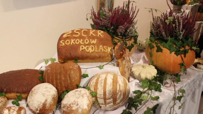 Uczestnicy i goście obchodów Tygodnia Dobrego Chleba