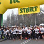 """foto: 100 młodych biegaczy  z """" Dwójki"""" w  Biegu  Niepodległości - DSC 1340 150x150"""