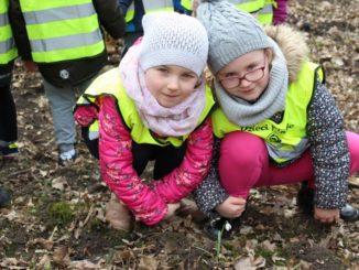 Przedszkolaki w rezerwacie przyrody