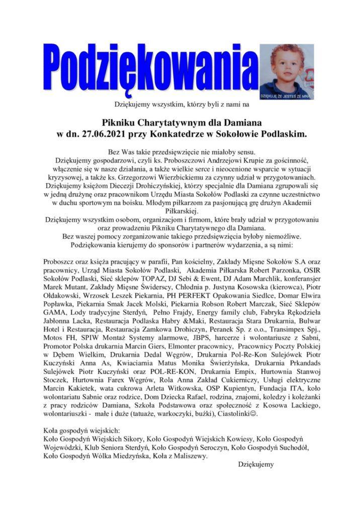 foto: Piknik Charytatywny Dla Damiana - podziekowania  spis firm 724x1024