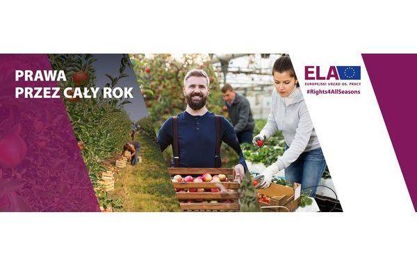Prawa pracowników sezonpwych na terenie UE