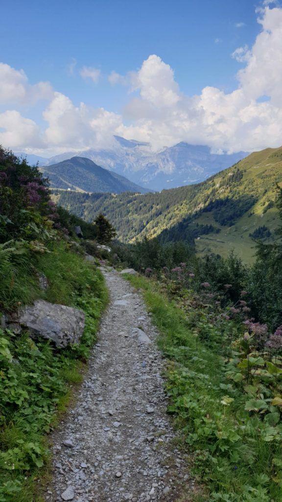 foto: Strażak z PSP Sokołów Podlaski zdobył Mont Blanc - 20210831 154842 576x1024
